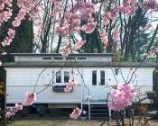 vakantie in nederland limburg pipowagen