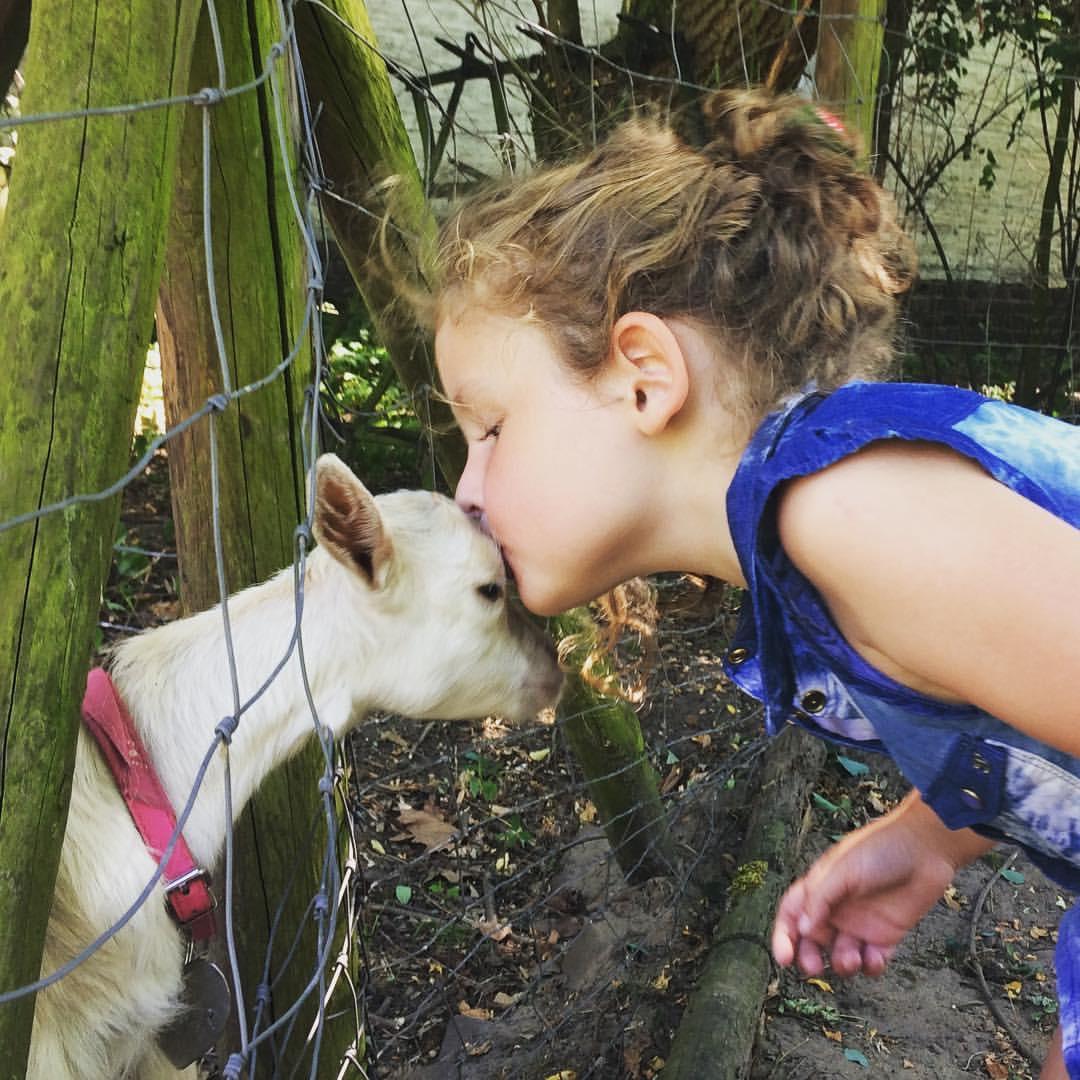 kiss a goat challenge
